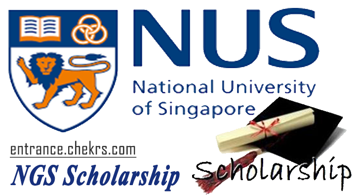 ngs scholarship interview