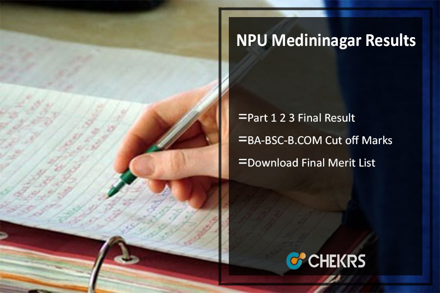 NPU Medininagar Results, Part 1 2 3 BA-BSC-B.COM Result @npu.ac.in